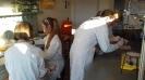 Wykład i zajęcia laboratoryjne na Wydziale Chemii UG_7
