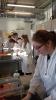 Wykład i zajęcia laboratoryjne na Wydziale Chemii UG_8